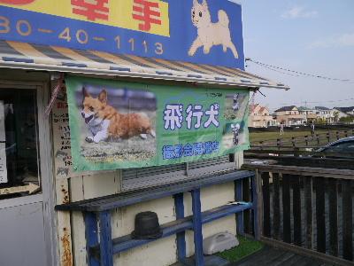 飛行犬11