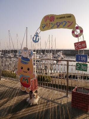 2014伊豆旅行9