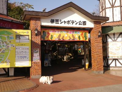 2014伊豆旅行2−1