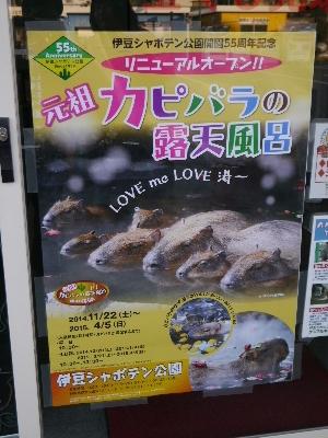 2014伊豆旅行3−1