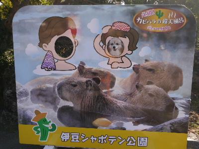 2014伊豆旅行3−3