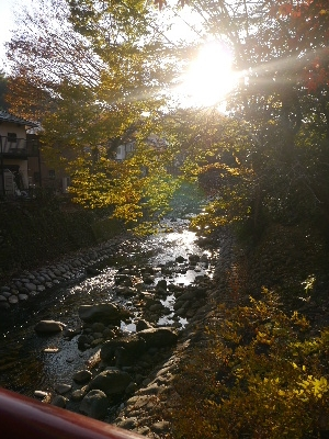 2014伊豆旅行5−15