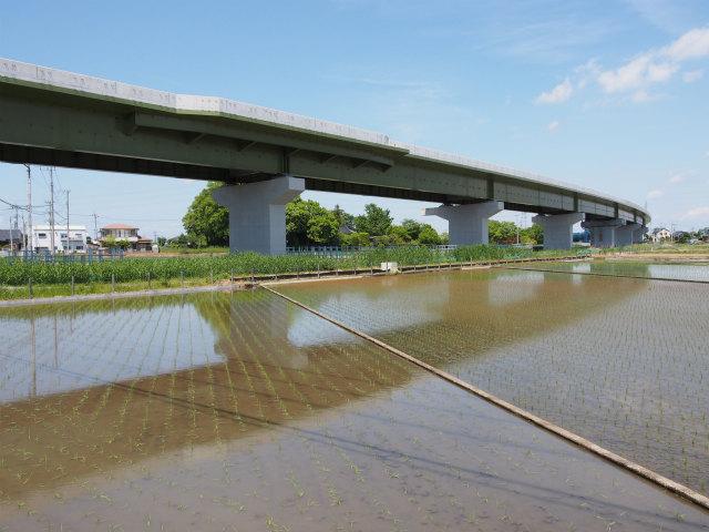 幸手インター方面は下り線側の橋脚すらなし。