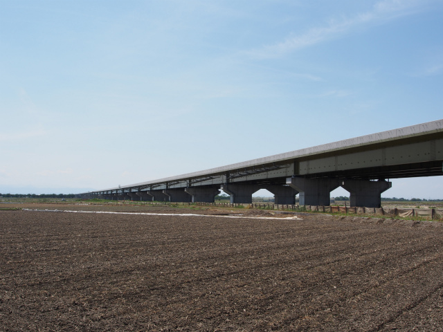 菖蒲白岡インターの先。下大崎高架橋を。