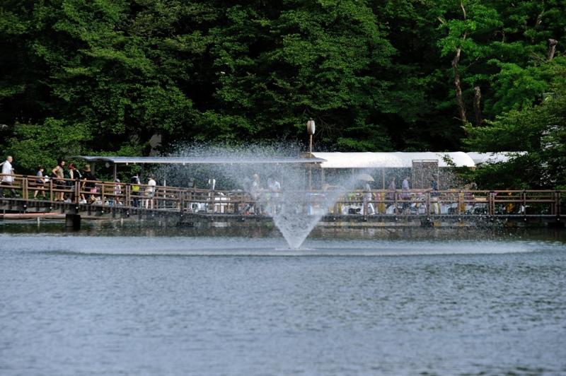 井の頭公園噴水