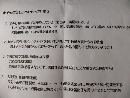 DSCF0442_convert_20131006203944.jpg