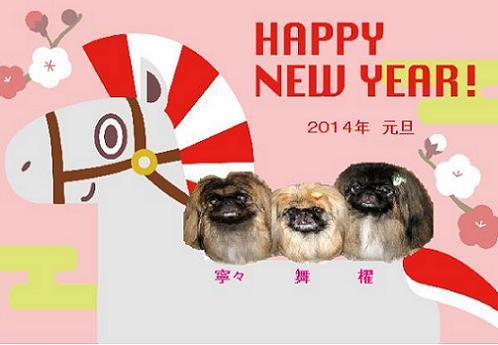 2014-01-01-1.jpg