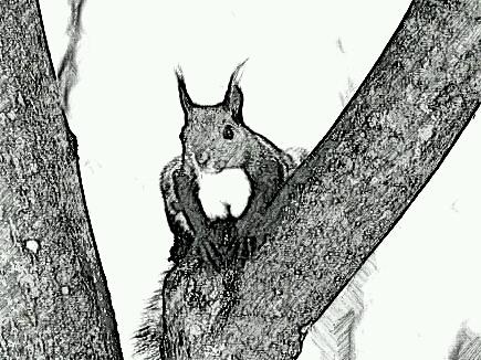 SketchGuru_20130607121553.jpg