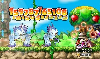 Maple10823a.jpg