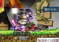 Maple10951a.jpg