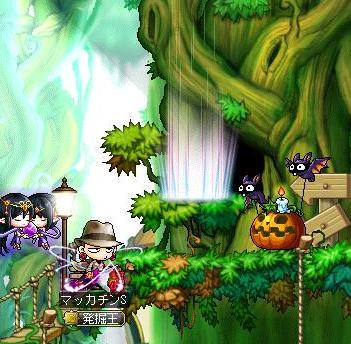 Maple10978a.jpg