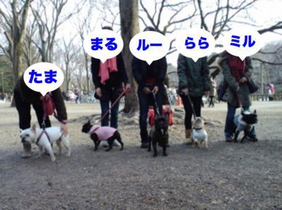20110125kichijoji.jpg