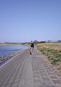 hatsuga5.jpg