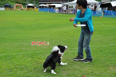 20120722-ima11.jpg