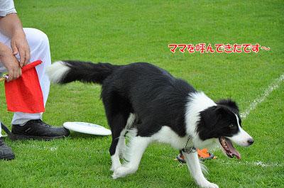 20120722-ima12.jpg