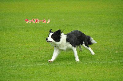 20120722-ima17.jpg