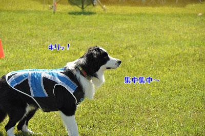 20120922-kiso01.jpg