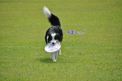 20120922-kiso04.jpg