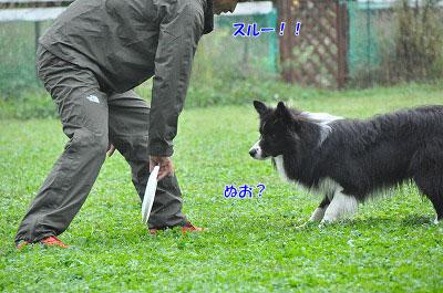 20120923-wan01.jpg