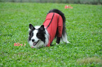 20120923-wan03.jpg