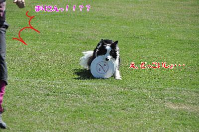20121006-rok04.jpg