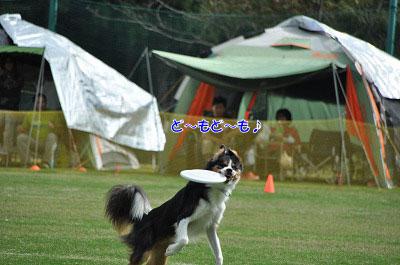 20121006-rok12.jpg