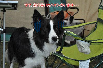 20121028-sim05.jpg