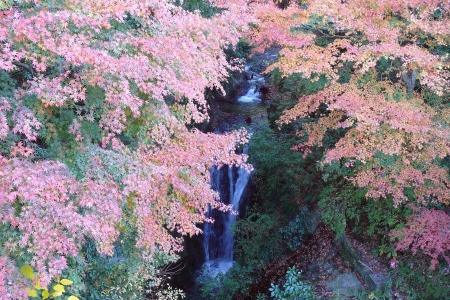 地蔵堂の滝