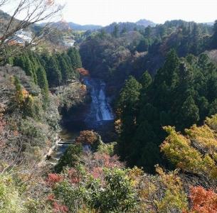 養老の滝(粟又の滝)