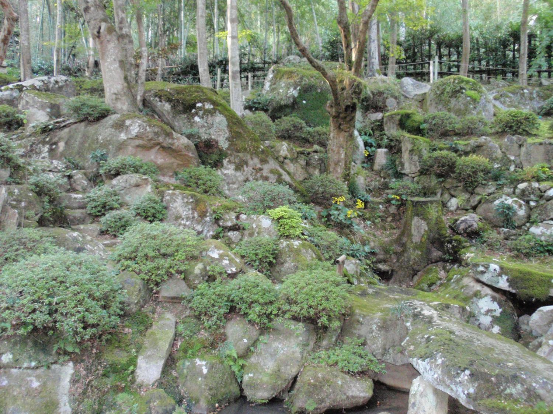教林坊・庭園3