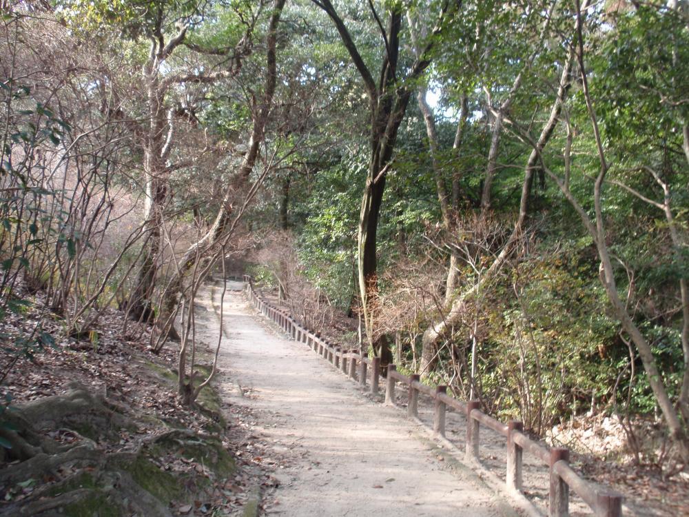 廣田神社8