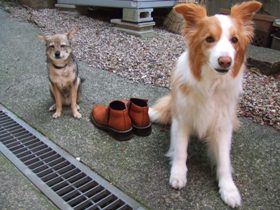 ビクター犬ならぬブーツ犬
