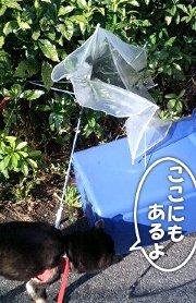 120404_taifu2.jpg