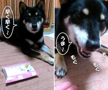 120730_kusuri.jpg