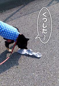 120827_kutsushita2.jpg