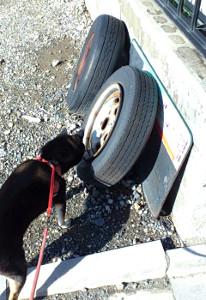 120922_tire.jpg