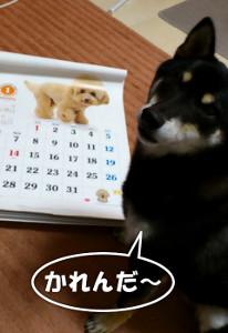 121101_calendar2.jpg