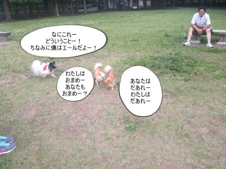 new_353237471380.jpg