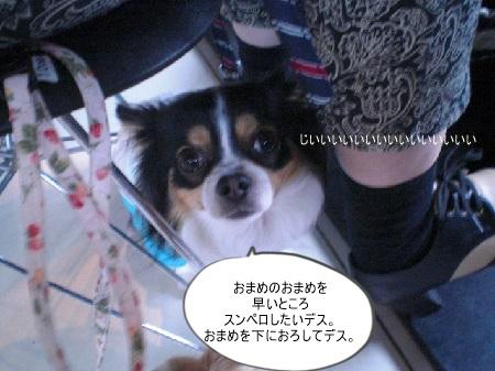 new_CIMG5589.jpg