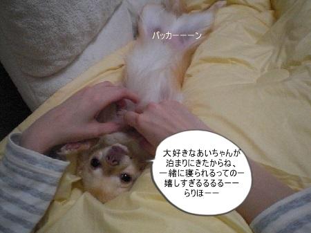 new_CIMG5647.jpg