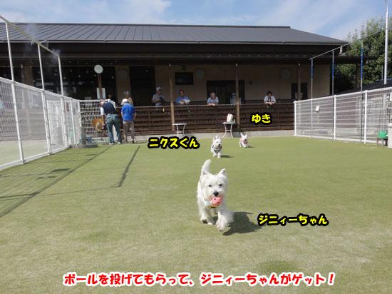 DSC05479.jpg