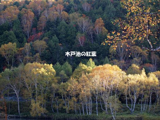 PA135709.jpg