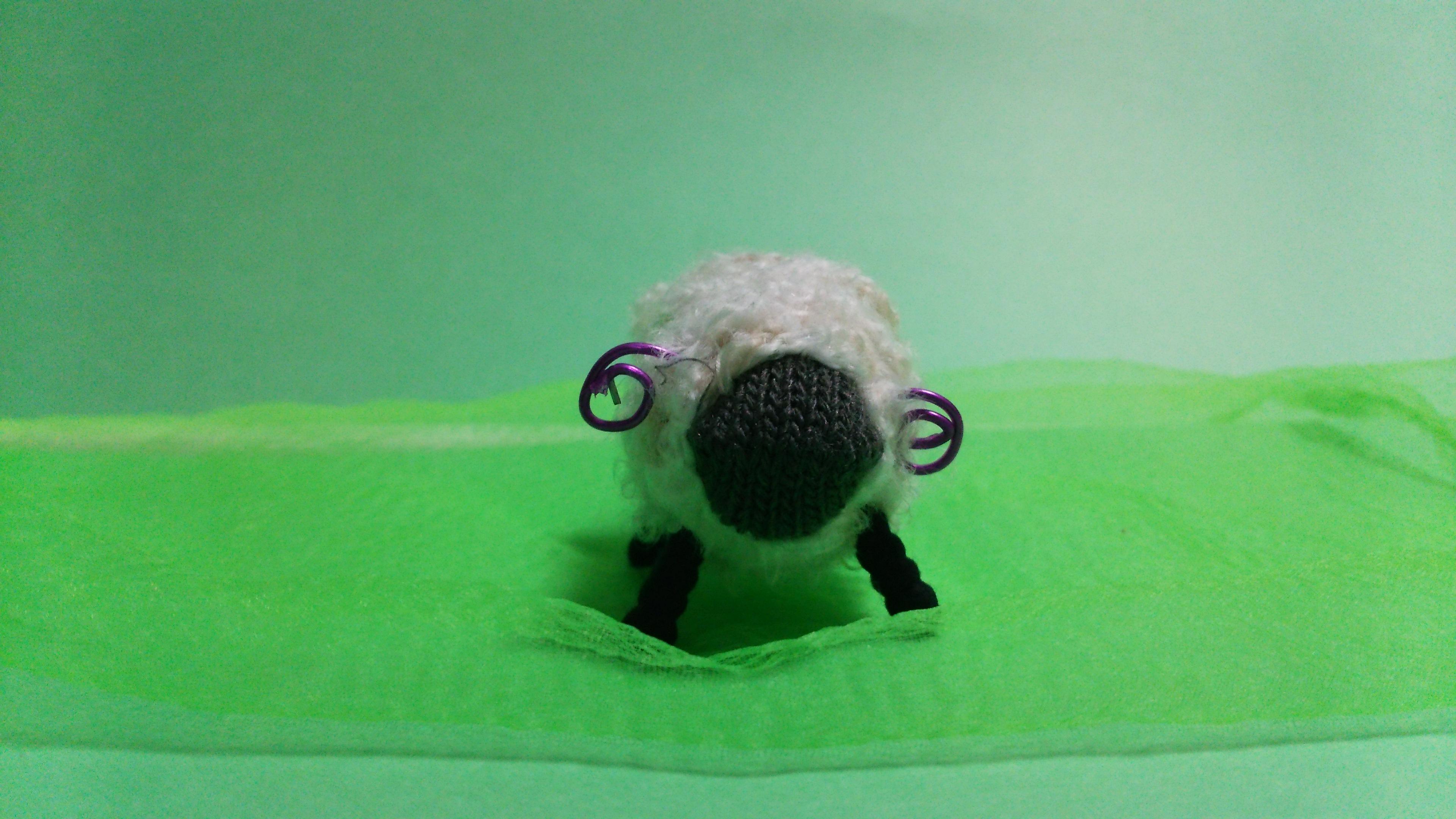 毛糸でひつじ 黒 正面