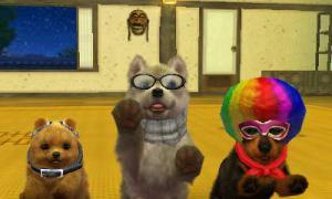 dogs0914.jpg