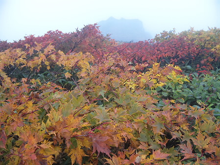 三ツ石山02(2012.10.1)