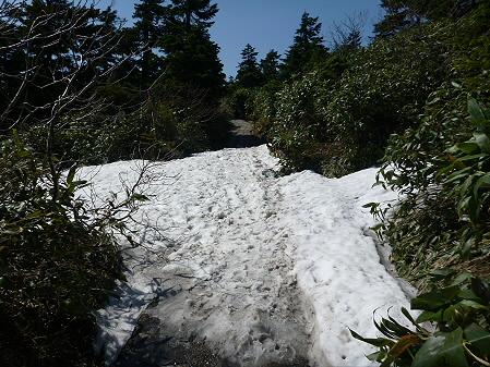 八幡平山頂へ行ってみた12(2012.6.26)