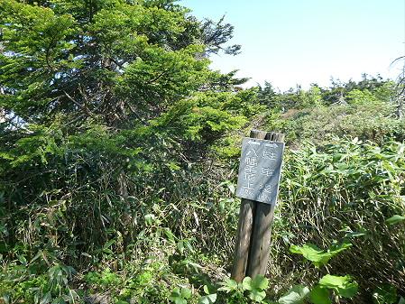 八幡平山頂へ行ってみた19(2012.6.26)