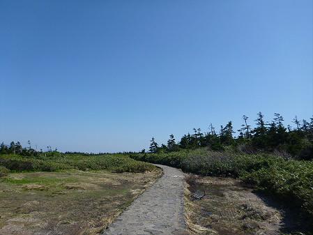 八幡平山頂へ行ってみた22(2012.6.26)