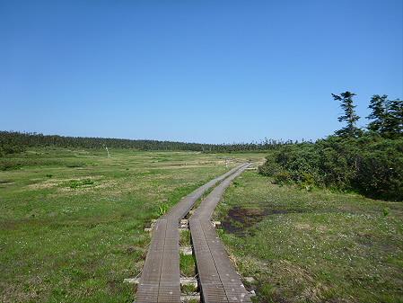 八幡平山頂へ行ってみた37(2012.6.26)