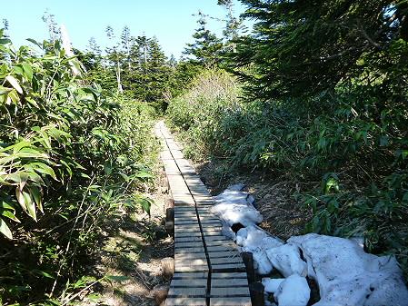 八幡平山頂へ行ってみた46(2012.6.26)